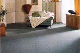 image showing A Clean Carpet Benefits Helth, Happiness and Economy